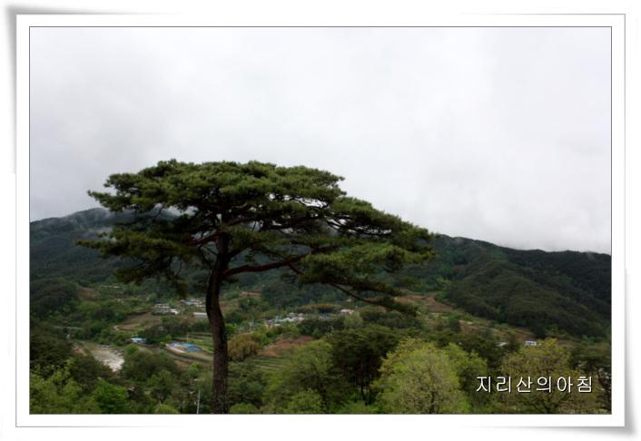 매동-IMG_2648.jpg