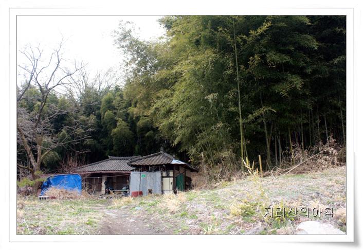 대나무-02.jpg