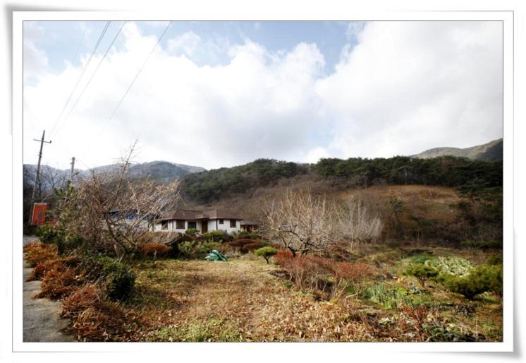 12산동면-둔기농원1a.jpg