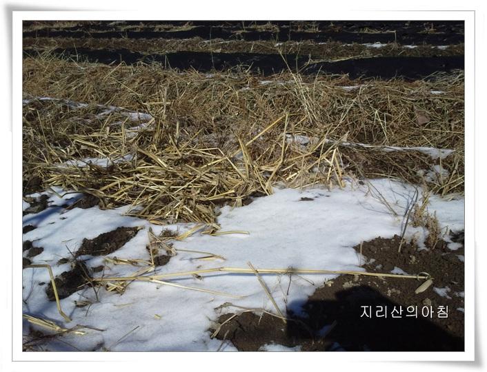 2013-02-13 12.02.58.jpg