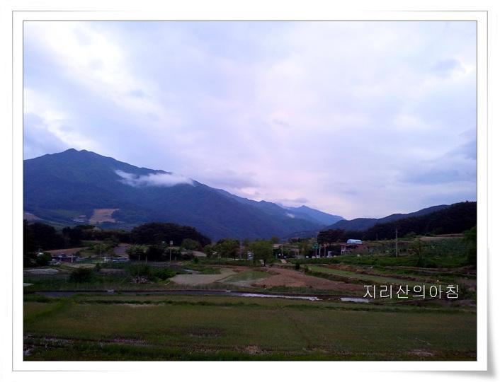 2011-05-21 19.15.05.jpg