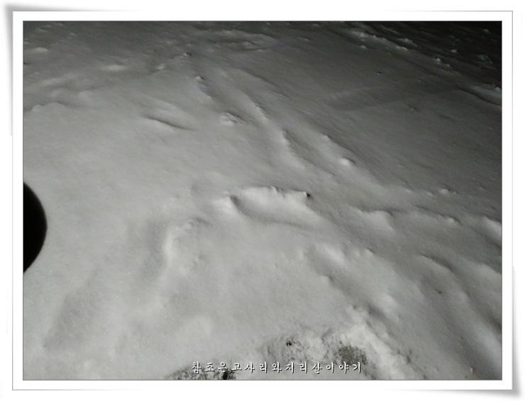 지리산겨울 (8).jpg