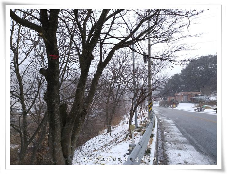 지리산겨울 (4).jpg