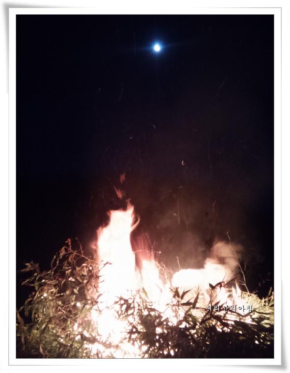 c-대나무태우기 (5).jpg