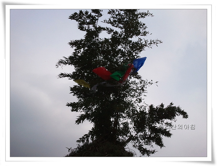 2012-01-31 13.30.46.jpg