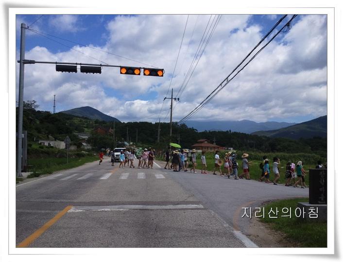 2011-07-19 14.01.31.jpg